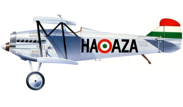 Fiat C.R.20 - Ungheria - 1^ Meteorological Group - 1936