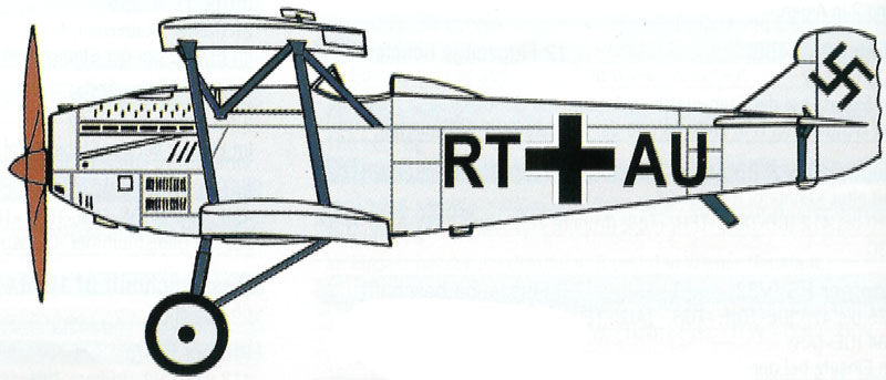 Fiat C.R.20 Bis - Luftwaffe - adottati dopo l'Anschluss dell'Austria - 1938
