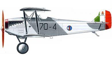 Fiat C.R.20