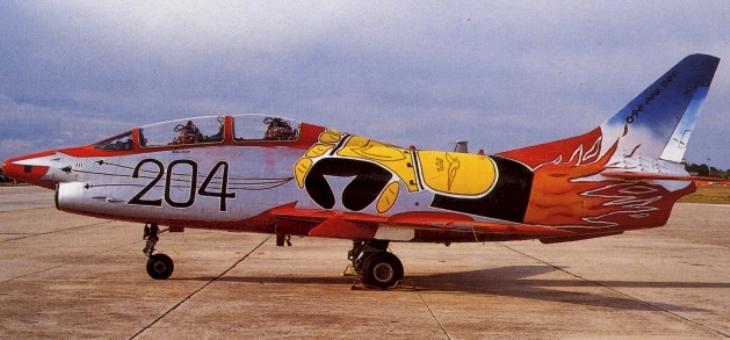 9 - Fiat G.91T/1 - 60^ Brigata Aerea - 204° Gruppo - Ultimo volo - 30 settembre 1995 - Amendola