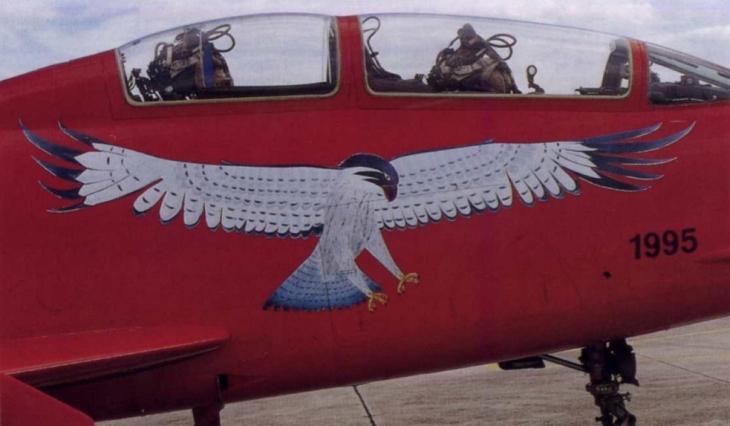 11 - Fiat G.91T/1 - 60^ Brigata Aerea - 204° Gruppo - Ultimo volo - 30 settembre 1995 - Amendola