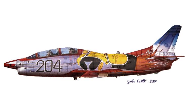 2 - Fiat G.91T/1 - 60^ Brigata Aerea - 204° Gruppo - Ultimo volo - 30 settembre 1995 - Amendola